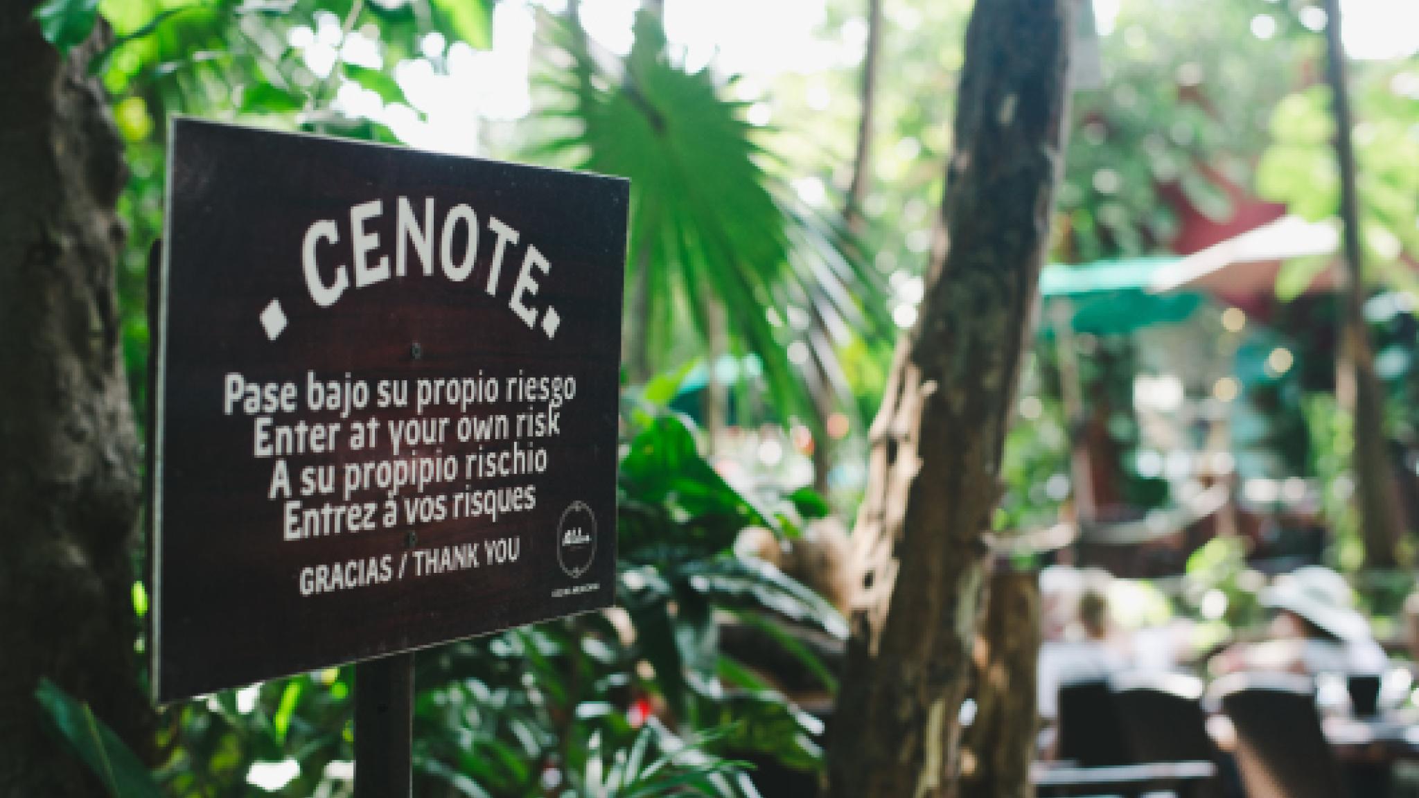 Residente_diseno_